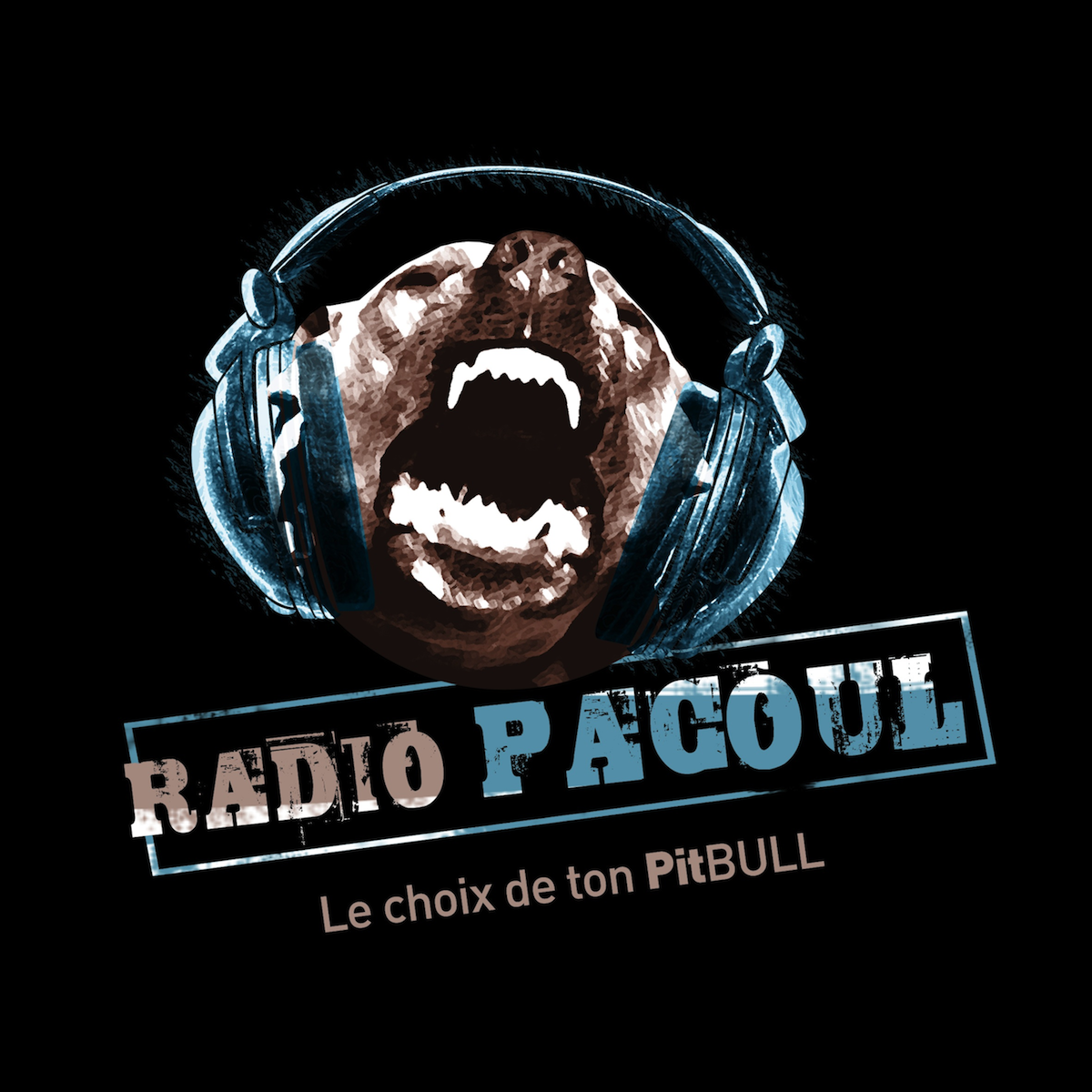 ecouter Radio Pacoul